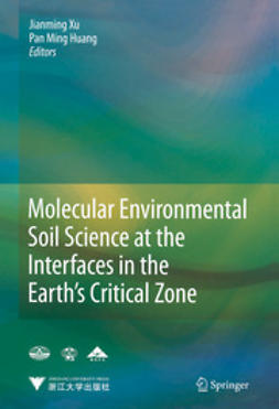 Xu, Jianming - Molecular Environmental Soil Science at the Interfaces in the Earth's Critical Zone, e-kirja