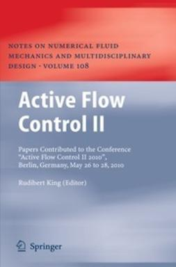 King, Rudibert - Active Flow Control II, ebook
