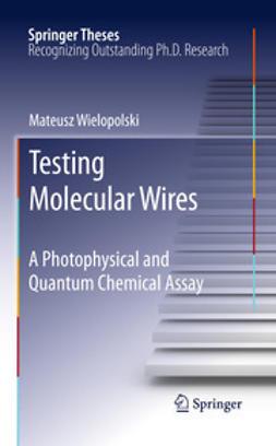 Wielopolski, Mateusz - Testing Molecular Wires, ebook