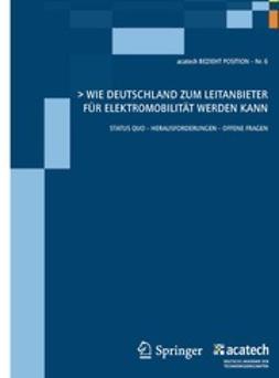 - Wie Deutschland zum Leitanbieter für Elektromobilität werden kann, ebook