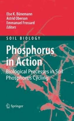 Bünemann, Else - Phosphorus in Action, ebook