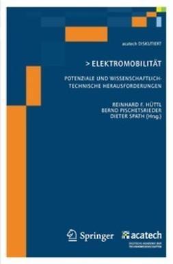 Hüttl, Reinhard F. - Elektromobilität, ebook