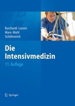 Burchardi, Hilmar - Die Intensivmedizin, e-bok