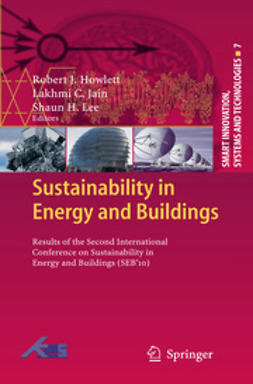 Howlett, Robert J. - Sustainability in Energy and Buildings, e-kirja