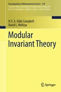 Campbell, H.E.A. Eddy - Modular Invariant Theory, ebook