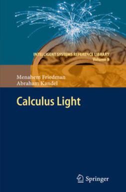 Friedman, Menahem - Calculus Light, ebook