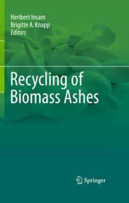 Insam, Heribert - Recycling of Biomass Ashes, e-bok