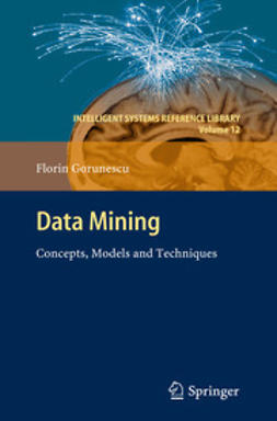 Gorunescu, Florin - Data Mining, ebook