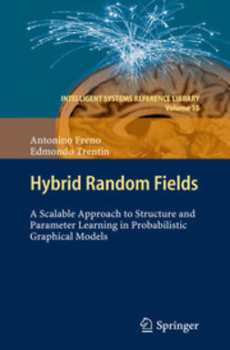 Freno, Antonino - Hybrid Random Fields, ebook