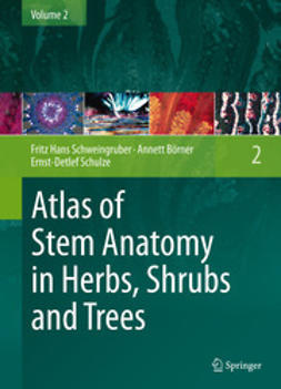 Schweingruber, Fritz Hans - Atlas of Stem Anatomy in Herbs, Shrubs and Trees, e-bok