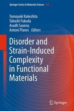 Kakeshita, Tomoyuki - Disorder and Strain-Induced Complexity in Functional Materials, ebook