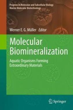 Müller, Werner E. G. - Molecular Biomineralization, ebook