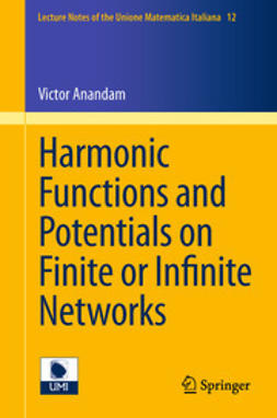 Anandam, Victor - Harmonic Functions and Potentials on Finite or Infinite Networks, e-bok