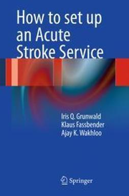 Grunwald, Iris Q. - How to set up an Acute Stroke Service, ebook