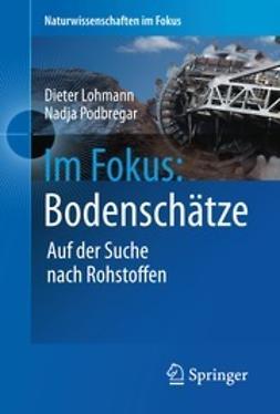 Lohmann, Dieter - Im Fokus: Bodenschätze, ebook