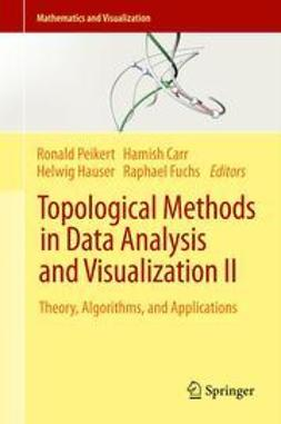 Peikert, Ronald - Topological Methods in Data Analysis and Visualization II, ebook