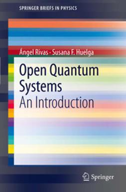 Rivas, ´Angel - Open Quantum Systems, e-kirja