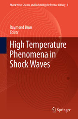 Brun, Raymond - High Temperature Phenomena in Shock Waves, ebook