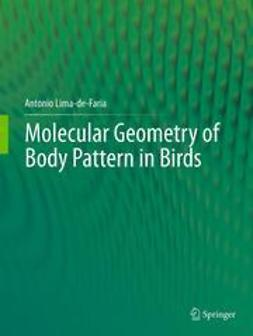 Lima-de-Faria, Antonio - Molecular Geometry of Body Pattern in Birds, ebook