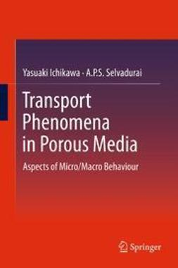 Ichikawa, Yasuaki - Transport Phenomena in Porous Media, ebook