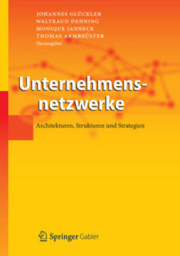 Glückler, Johannes - Unternehmensnetzwerke, ebook