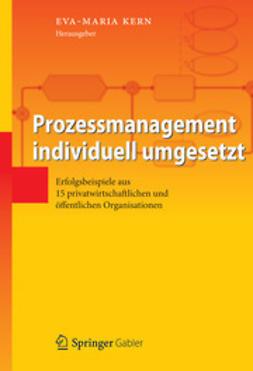 Kern, Eva-Maria - Prozessmanagement individuell umgesetzt, e-bok