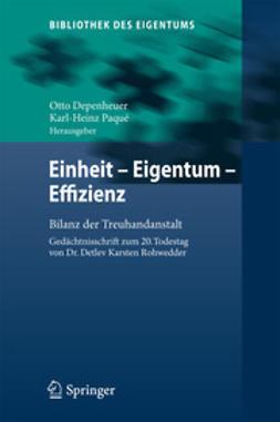 Depenheuer, Otto - Einheit - Eigentum - Effizienz, ebook