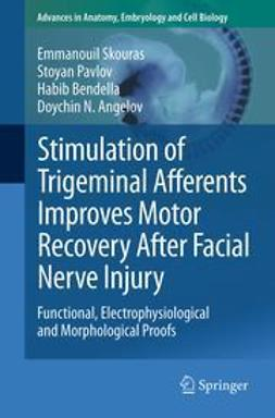 Skouras, Emmanouil - Stimulation of Trigeminal Afferents Improves Motor Recovery After Facial Nerve Injury, ebook