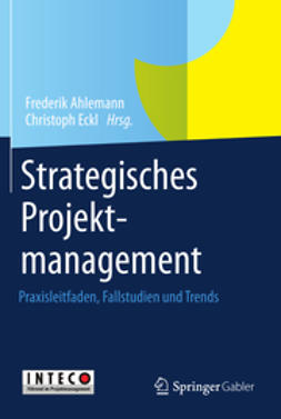 Ahlemann, Frederik - Strategisches Projektmanagement, e-bok
