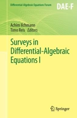Ilchmann, Achim - Surveys in Differential-Algebraic Equations I, ebook
