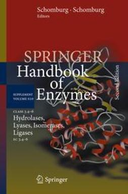 Schomburg, Dietmar - Class 3.4–6 Hydrolases, Lyases, Isomerases, Ligases, ebook