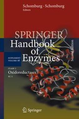 Schomburg, Dietmar - Class 1 Oxidoreductases, ebook