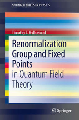 Hollowood, Timothy J - Renormalization Group and Fixed Points, ebook