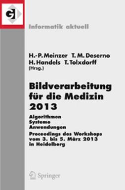 Meinzer, Hans-Peter - Bildverarbeitung für die Medizin 2013, ebook