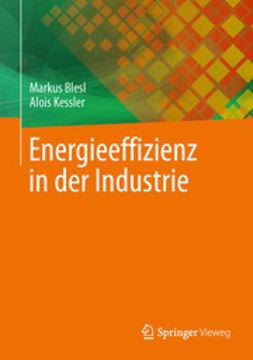Blesl, Markus - Energieeffizienz in der Industrie, ebook