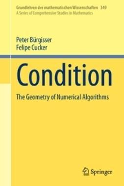 Bürgisser, Peter - Condition, ebook