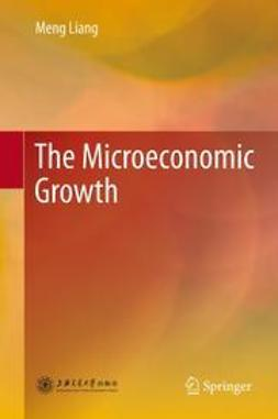 Liang, Meng - The Microeconomic Growth, ebook