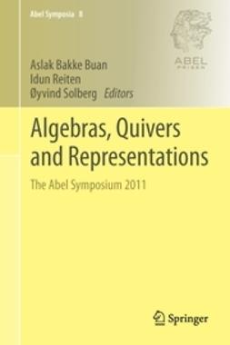 Buan, Aslak Bakke - Algebras, Quivers and Representations, ebook