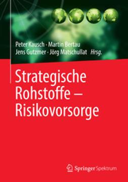 Kausch, Peter - Strategische Rohstoffe — Risikovorsorge, ebook