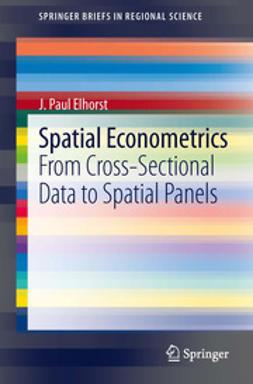 Elhorst, J. Paul - Spatial Econometrics, e-bok