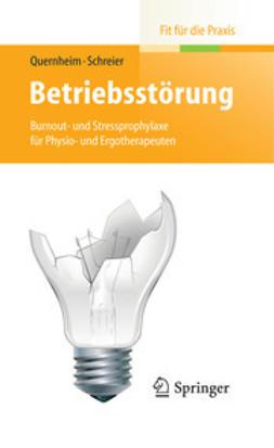 Quernheim, German - Betriebsstörung, ebook