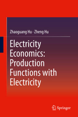 Hu, Zhaoguang - Electricity Economics: Production Functions with Electricity, ebook