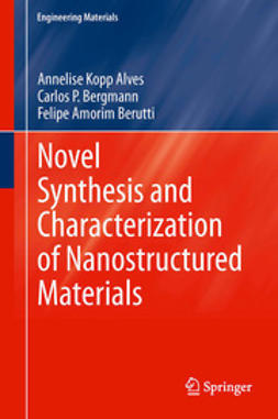 Alves, Annelise Kopp - Novel Synthesis and Characterization of Nanostructured Materials, e-kirja