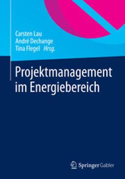 Lau, Carsten - Projektmanagement im Energiebereich, ebook