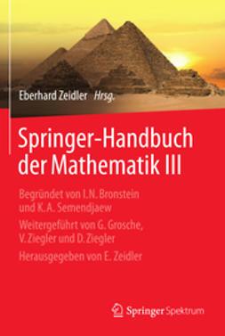 Zeidler, Eberhard - Springer-Handbuch der Mathematik III, ebook