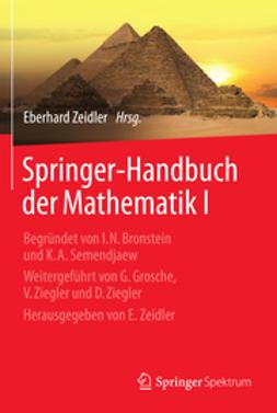 Zeidler, Eberhard - Springer-Handbuch der Mathematik I, ebook
