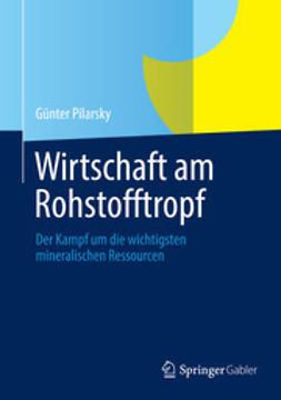 Pilarsky, Günter - Wirtschaft am Rohstofftropf, ebook