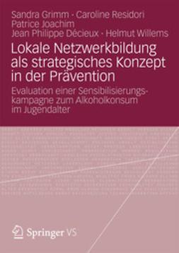 Grimm, Sandra - Lokale Netzwerkbildung als strategisches Konzept in der Prävention, ebook
