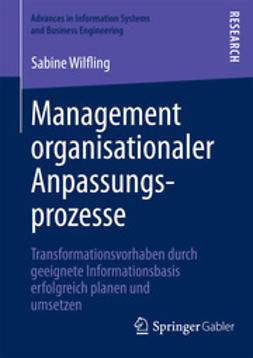 Wilfling, Sabine - Management organisationaler Anpassungsprozesse, ebook