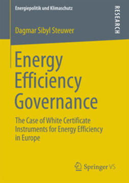 Steuwer, Dagmar Sibyl - Energy Efficiency Governance, ebook
